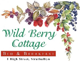 Wild Berry Cottage - Lightning Ridge Tourism