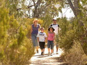 Pepper Tree Cottage - Lightning Ridge Tourism