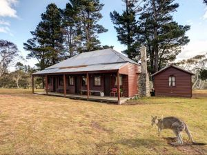 The Pines Cottage - Lightning Ridge Tourism