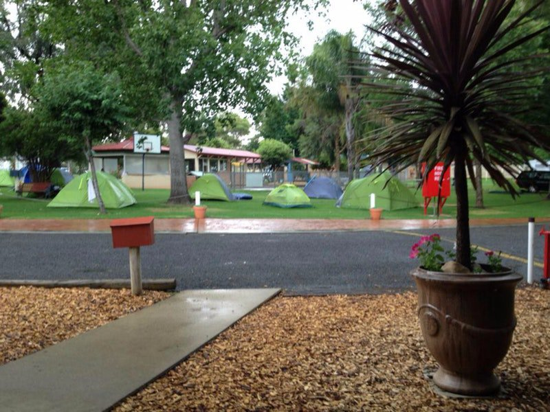 Young Caravan Tourist Park - Lightning Ridge Tourism