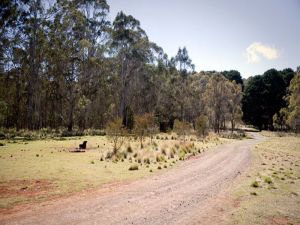 The Pines campground - Lightning Ridge Tourism