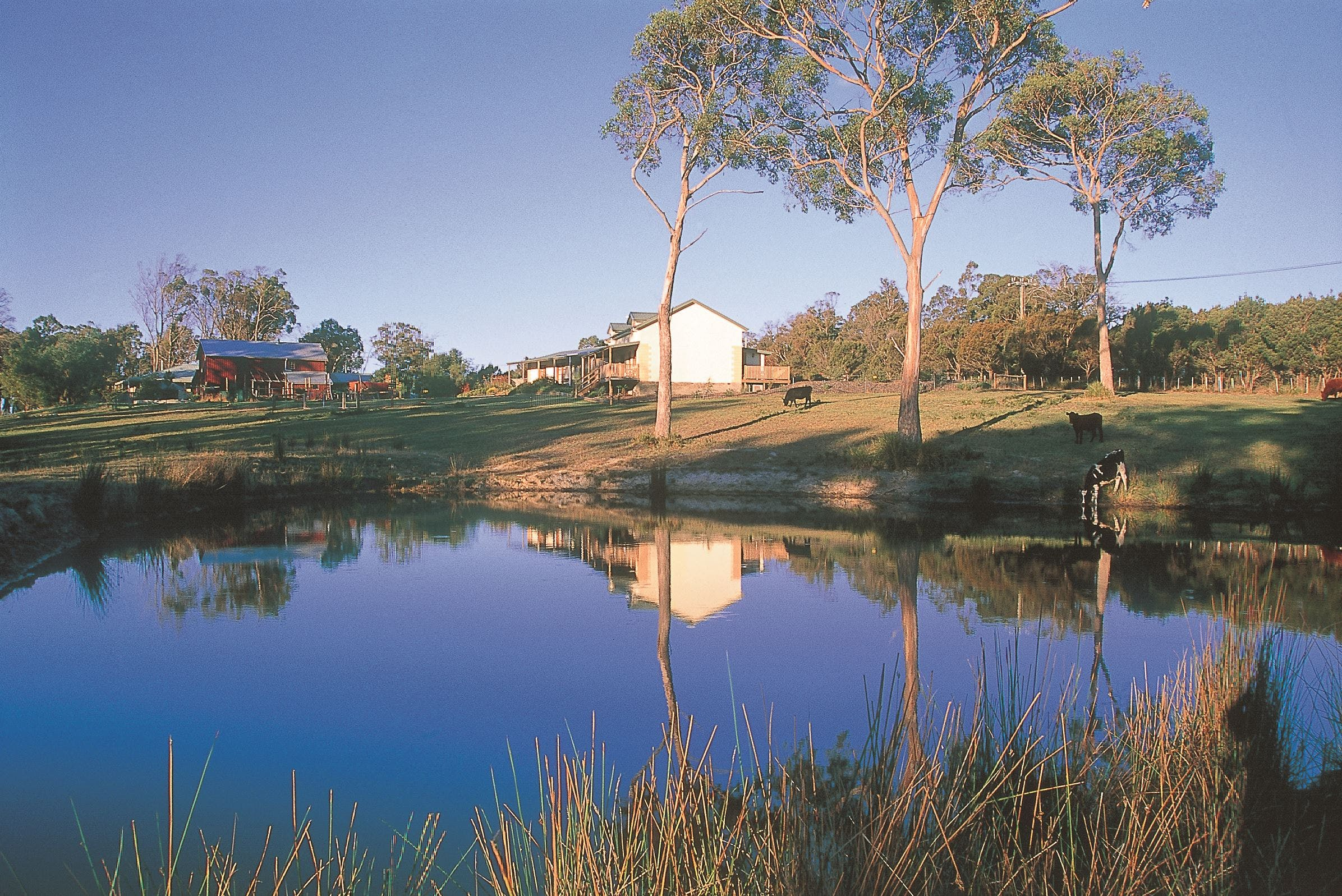 Platypus Park Country Retreat - Lightning Ridge Tourism