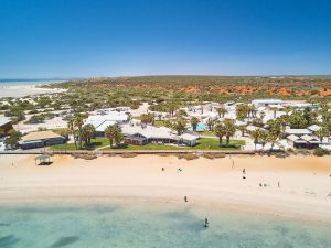 RAC Monkey Mia Dolphin Resort - Lightning Ridge Tourism