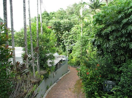 Tree Tops Lodge Cairns