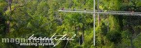Rainforest Skywalk - Lightning Ridge Tourism