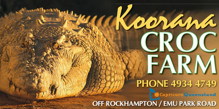 Koorana Saltwater Crocodile Farm - Lightning Ridge Tourism