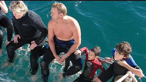 Dolphcom - Dolphin & Whale Swimming Adventures - Lightning Ridge Tourism