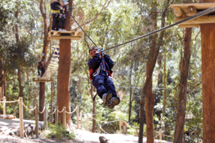 Currumbin Wildlife Sanctuary - Lightning Ridge Tourism