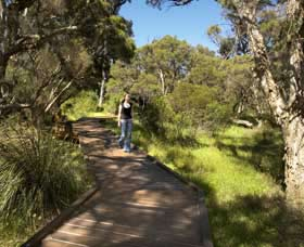 Leschenault Peninsula Conservation Park - Lightning Ridge Tourism