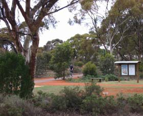 Gribble Creek Walk and Cycle Way - Lightning Ridge Tourism