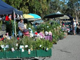 Meadows Monthly Market - Lightning Ridge Tourism