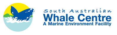South Australian Whale Centre - Lightning Ridge Tourism