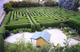 Westbury Maze and Tea Room - Lightning Ridge Tourism