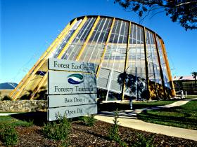 Forest EcoCentre - Lightning Ridge Tourism