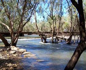 Low Level Nature Reserve - Lightning Ridge Tourism