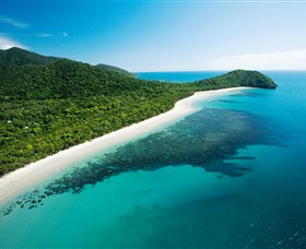 Cape Tribulation Daintree National Park - Lightning Ridge Tourism