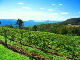 Preston Peak Wines - Lightning Ridge Tourism