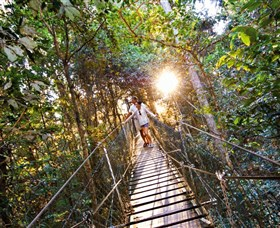 Tree Top Walkway - Lightning Ridge Tourism