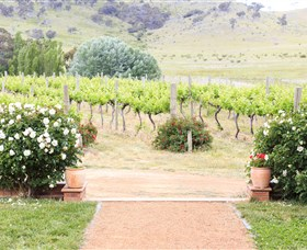 Brindabella Hills Winery - Lightning Ridge Tourism