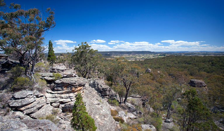 Munghorn Gap Nature Reserve - Lightning Ridge Tourism