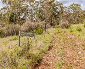 Old Mountain Road Walking Track - Lightning Ridge Tourism