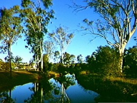 Dingo Creek Park - Lightning Ridge Tourism