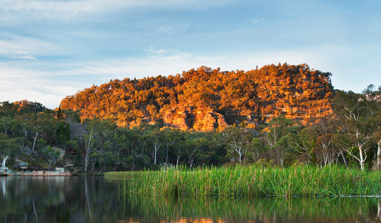 Wollemi National Park - Lightning Ridge Tourism