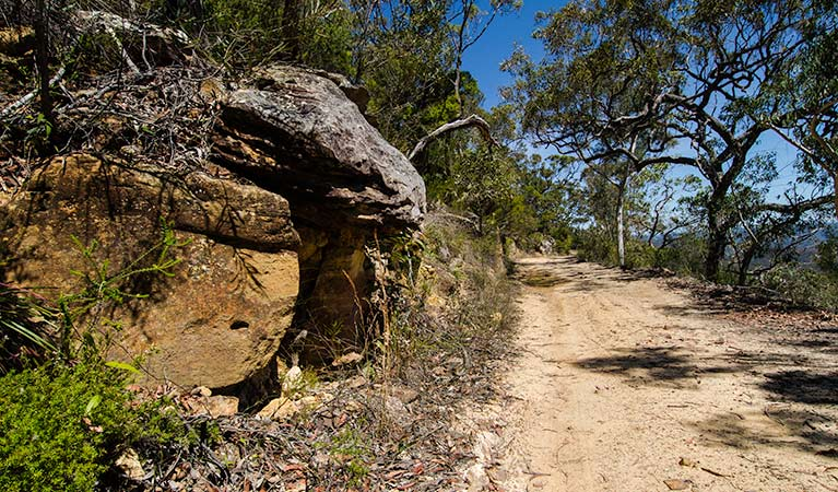 Canoelands Ridge walking track - Lightning Ridge Tourism