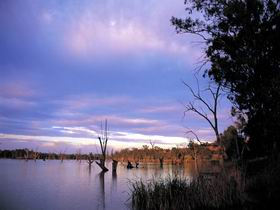 Loch Luna Game Reserve and Moorook Game Reserve - Lightning Ridge Tourism