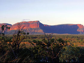 Blackdown Tableland National Park - Lightning Ridge Tourism