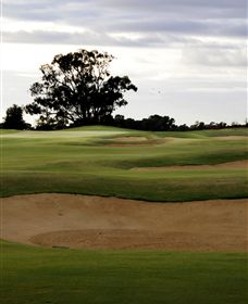Black Bull Golf Club - Lightning Ridge Tourism