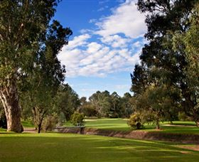 Commercial Golf Course - Lightning Ridge Tourism