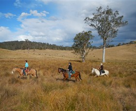 Chapman Valley Horse Riding - Lightning Ridge Tourism