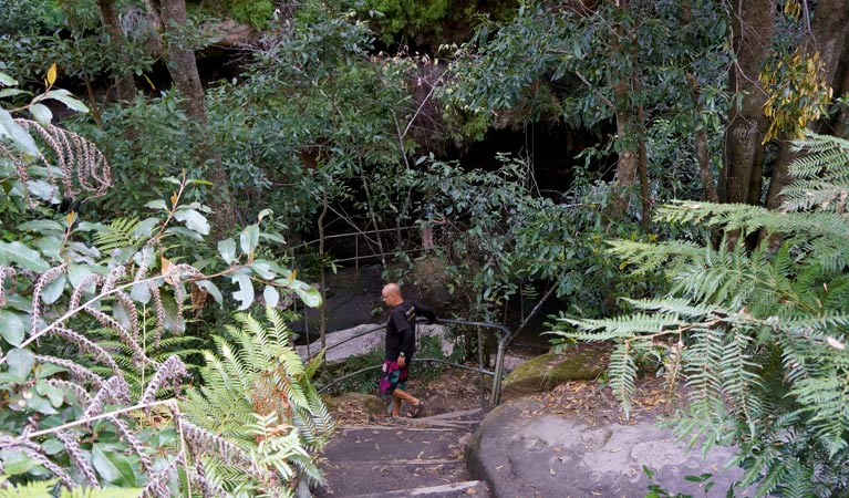 Leura Cascades Fern Bower - Lightning Ridge Tourism