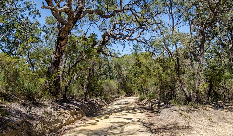 Howes trail - Lightning Ridge Tourism