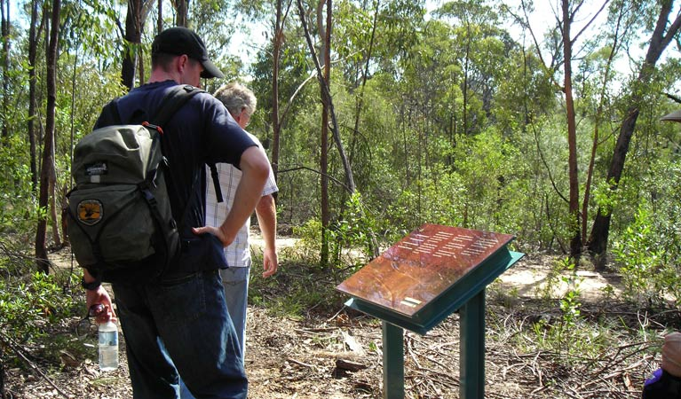 Finchley cultural walk - Lightning Ridge Tourism