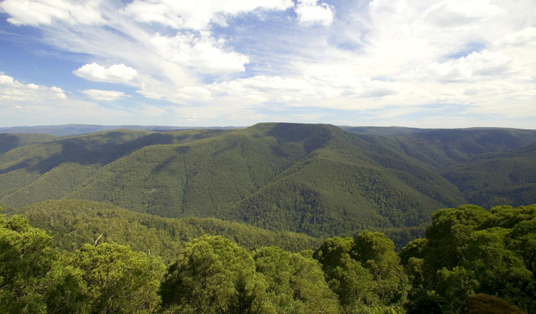 Barrington Tops National Park - Lightning Ridge Tourism
