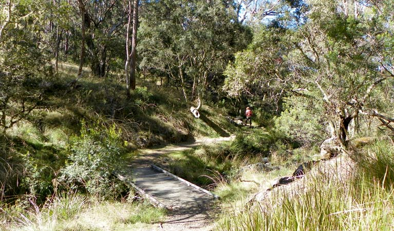 Wollomombi walking track - Lightning Ridge Tourism