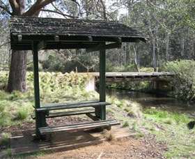 Barrington Tops State Forest - Lightning Ridge Tourism