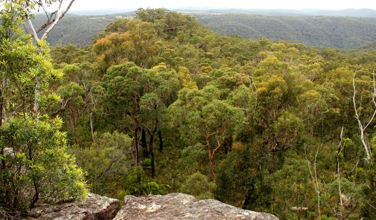 Mount Olive lookout - Lightning Ridge Tourism
