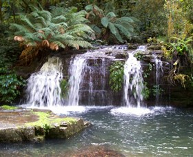 Barrington Tops National Park Walks - Lightning Ridge Tourism