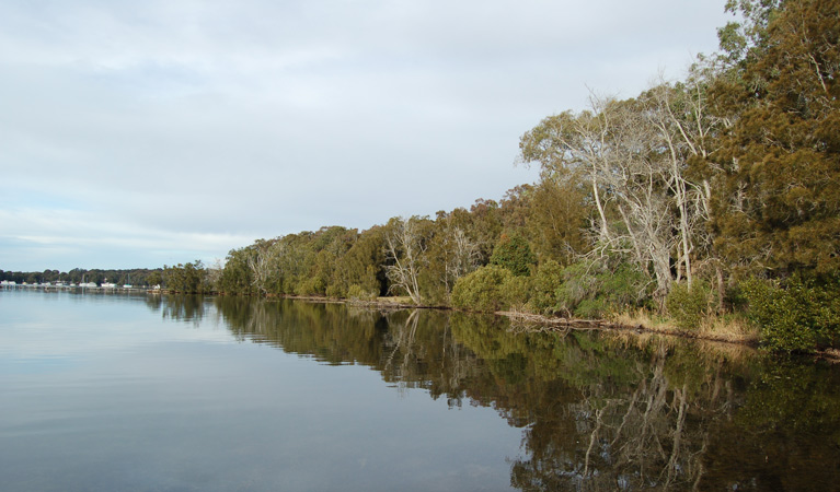 Lake Macquarie State Conservation Area - Lightning Ridge Tourism