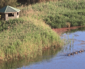 Spring Creek Bird Hide - Lightning Ridge Tourism