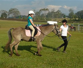 Port Macquarie Horse Riding Centre - Lightning Ridge Tourism
