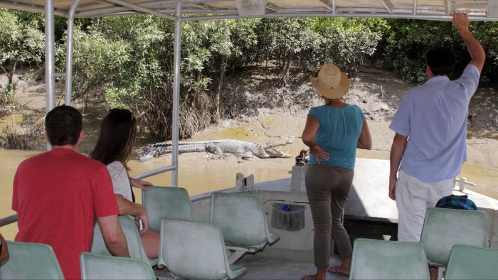 Whitsunday Crocodile Safari - Lightning Ridge Tourism