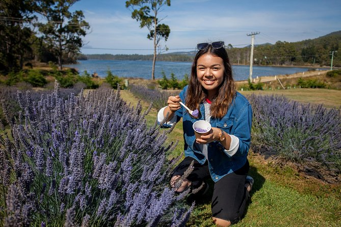 Port Arthur and Lavender Farm Active Day Tour - Lightning Ridge Tourism