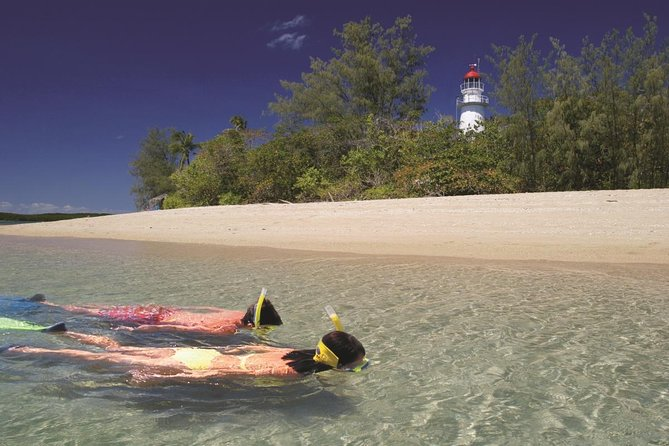 Wavedancer Low Isles Great Barrier Reef Sailing Cruise from Palm Cove - Lightning Ridge Tourism