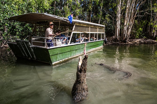 Hartley's Crocodile Adventures Day Trip from Palm Cove - Lightning Ridge Tourism
