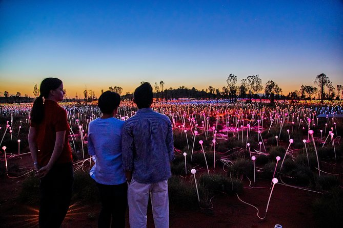 Uluru Field of Light Sunrise Tour - Lightning Ridge Tourism