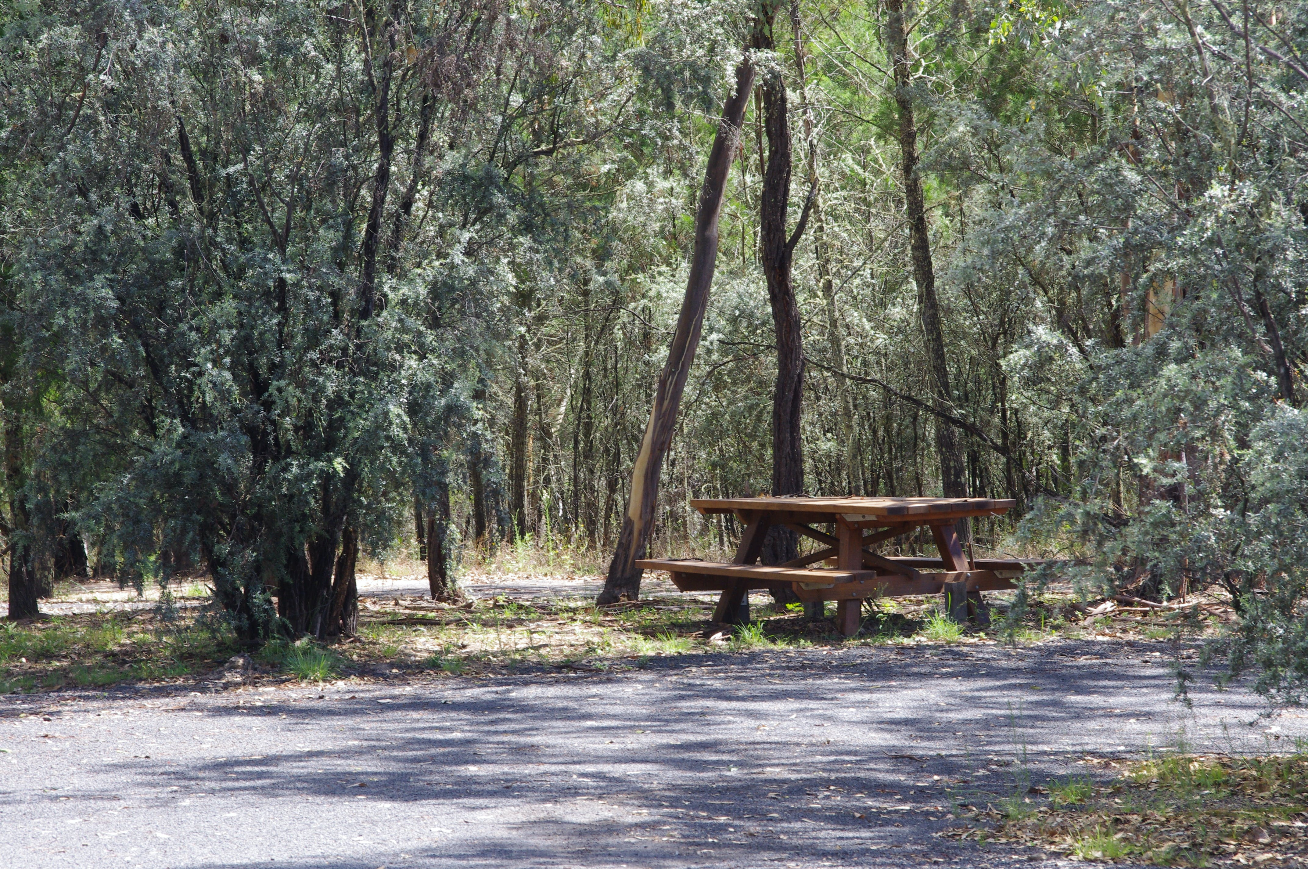 Goonoowigall State Conservation Area - Lightning Ridge Tourism